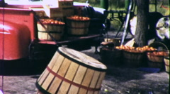 Baskets of Apples Harvest Orchard Fruit Picking Vintage Film Home Movie 9209 - stock footage