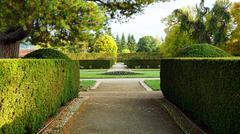formal garden in the park - stock photo