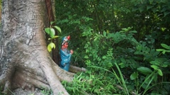Macau - City Garden - Old Tree and Traditional Figurine Stock Footage