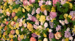 Camera shoots Wall from the Flowers of the roses, gerbera in motion - stock footage