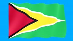 Flag of Guyana.        Waving flag (PNG) computer animatie. - stock footage