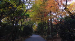 Path in Forest at Ryoanji in Kyoto, Japan Stock Footage