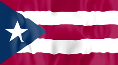 Animated flag of Puerto Rico - stock footage