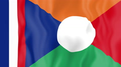 Animated flag of the Reunion Islands Stock Footage