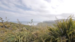 Ruggard Costline the easternmost point on the North Island of New Zealand. - stock footage