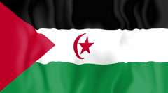 Stock Video Footage of Animated flag of Sahrawi Arab Democratic Republic