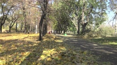 Girl riding on a motorbike through the autumn park among trees Stock Footage