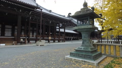 Hall, Lantern, and Ginkgo Tree at Temple in Kyoto, Japan Stock Footage