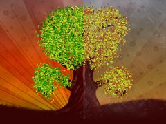 Autumn and summer season tree Stock Illustration