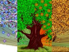 Four season tree Stock Illustration
