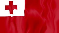 Animated flag of Tonga Stock Footage