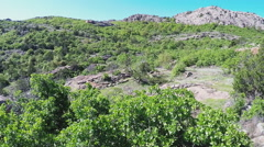 Trees On Mountainside- Wichita Mountains Nature Reserve Stock Footage