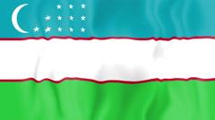 Animated flag of Uzbekistan - stock footage