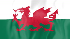 Animated flag of Wales Stock Footage