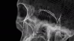Grid of Human Skull Stock Footage