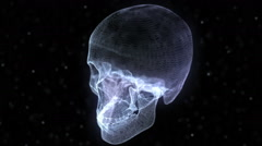 Stock Video Footage of Grid of Human Skull