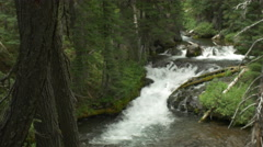 Scenic river Stock Footage