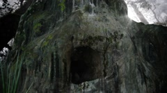 A Creepy Cave in a Rain forest Fill with Mosquito and Flying Insects Arkistovideo