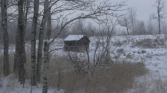 4k Abandoned Old Shed In Field Snow Long Grass Damaged Graffiti Trees Winter Stock Footage