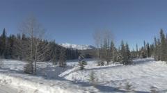 4k Driving By Beautiful Mountain Snow Fir Trees Icy Peak Winter Hand Held Jasper - stock footage