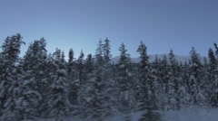 4k Mountains Forest Trees Covered With Snow Jasper Sunlight Lens Flare Hand Held Stock Footage