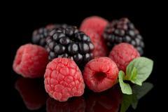 Blackberry and raspberry Stock Photos