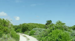 POV-Driving dirt road through stunted tropical growth along Cozumel coast line - stock footage
