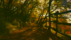 Country Walk in Autumn Stock Footage