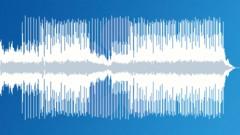 Happy Strummer (Bed) - stock music