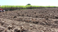 Planting sugarcane with Agricultural machinery Stock Footage