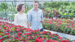 Young couple choosing flowers Stock Footage