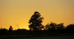 Amazing view of a golden sunset at Caledon, Canada Stock Footage