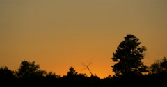 Beautiful view of golden sky at sunset at Caledon, Canada Stock Footage