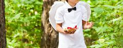 Boy cupid with angel wings - stock photo