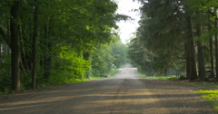 Car diriving on a road near the forest at Belfountain, Canada Stock Footage