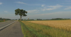 Cars driving on a road near a wheat field at Belfountain, Canada Stock Footage