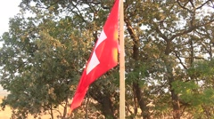 Waving Swiss flag at the forest in the wind Stock Footage
