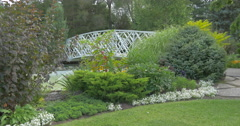 View of a bridge, lake, fountain and ornamental plants at Kitchener, Canada Stock Footage