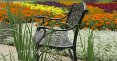 Beautiful view of a vintage bench near a flower bed at Kitchener, Canada Stock Footage