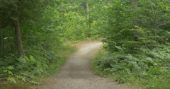 Beautiful path surrounded by trees at Killbear Provincial Park Stock Footage