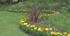 View of a beautiful flower bed near the greensward at Kitchener, Canada Stock Footage
