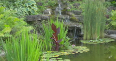 View of a spring flowing into a lake surrounded by plants at Kitchener, Canada Stock Footage