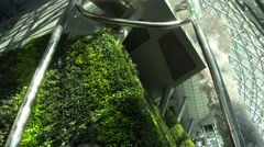 Lush green wall in the Seoul City Hall Stock Footage