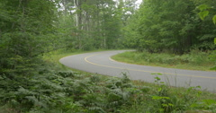Stock Video Footage of Curvy road surrounded by trees at Killbear Provincial Park