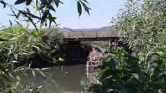 Red car crosses a wooden bridge over a river dirty bordered by green bushes Stock Footage