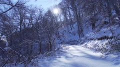 The sun illuminates the mountain forest road covered with snow Stock Footage