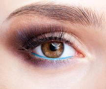 Emale eye zone and brows with day makeup Stock Photos