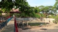 Crocodile farm in Cambodia Footage