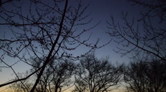 Daylight fades on a winter evening Stock Footage