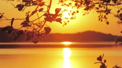 Camera pan of tree branch and sunset over the lake Stock Footage